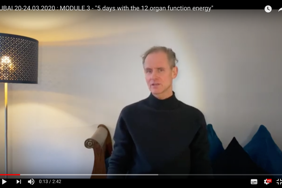 Module 3 of my Foundational Training –Five Days with the Twelve Organ Function Energy