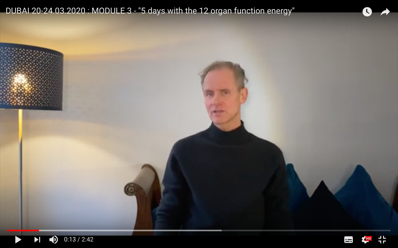 Module 3 of my Foundational Training – Five Days with the Twelve Organ Function Energy